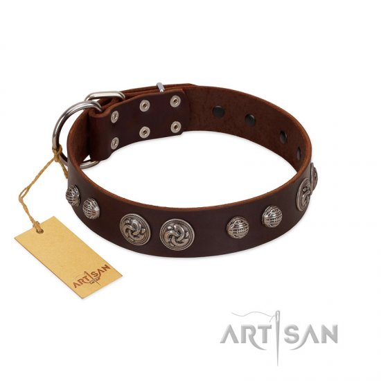 """Choco Brownie"" FDT Artisan Brown Leather American Bulldog Collar Adorned with Silver-Like Conchos"