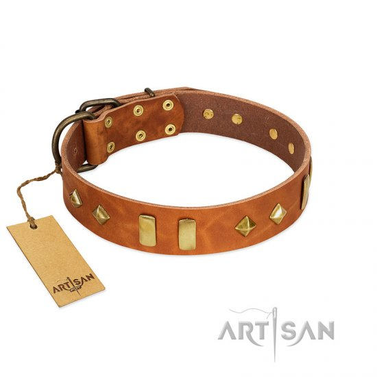 """Woofy Dawn"" FDT Artisan Tan Leather American Bulldog Collar with Plates and Rhombs"
