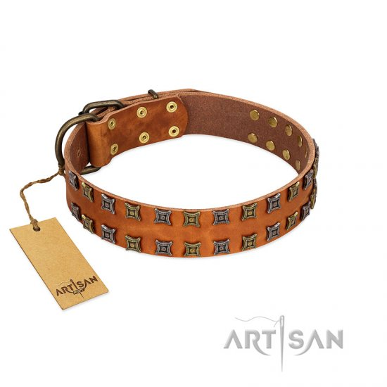 """Terra-cotta"" FDT Artisan Tan Leather American Bulldog Collar with Two Rows of Studs"