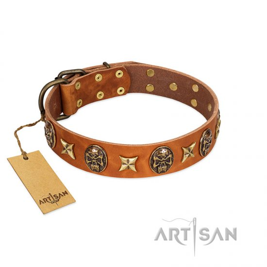 """Rockin' Doggie"" FDT Artisan Tan Leather American Bulldog Collar Adorned with Stars and Skulls"