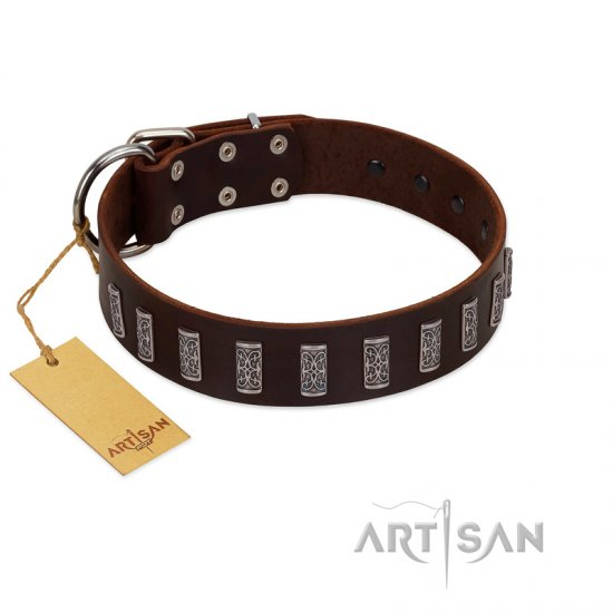 """Brown Lace"" Handmade FDT Artisan Brown Leather American Bulldog Collar for Everyday Walks"