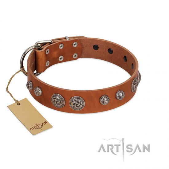 """Era Infinitum"" FDT Artisan Tan Leather American Bulldog Collar Adorned with Chrome-plated Circles"