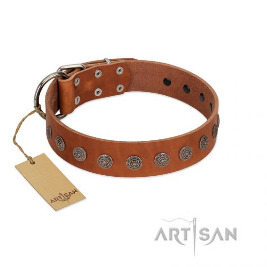 """Lucky Star"" Handmade FDT Artisan Designer Tan Leather American Bulldog Collar with Round Plates"