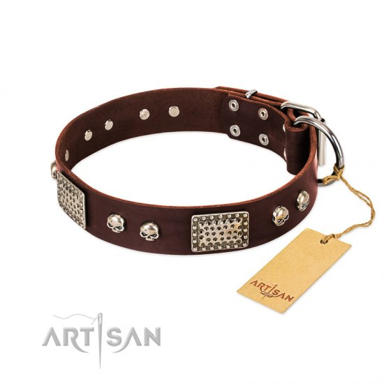 """Pirate Skull"" FDT Artisan Brown Leather American Bulldog Collar with Old Silver Look Plates and Skulls"