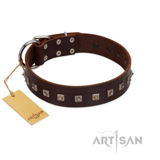 """Kingly Grace"" FDT Artisan Brown Leather American Bulldog Collar with Silver-like Dotted Studs"