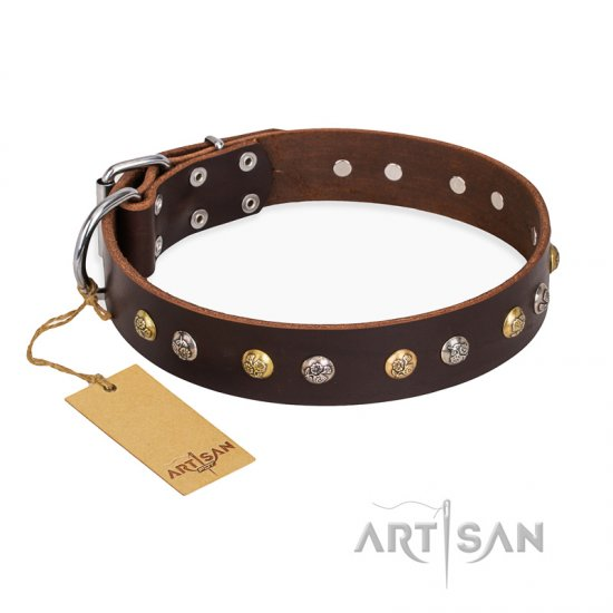 """Golden""n""Silver Luxury"" FDT Artisan Leather American Bulldog Collar with Engraved Studs"