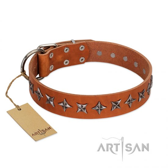 """Star Trek"" FDT Artisan Tan Leather American Bulldog Collar Decorated with Stars"