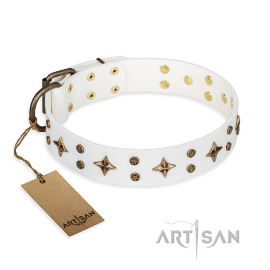 'Bright stars' FDT Artisan White Leather American Bulldog Collar with Old Bronze Look Decorations - 1 1/2 inch (40 mm) wide