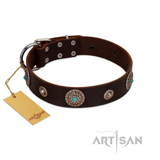 """Magic Stones"" FDT Artisan Brown Leather American Bulldog Collar with Chrome Plated Brooches and Studs"