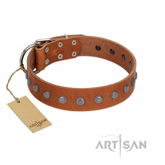 """Little Floret"" Fashionable FDT Artisan Tan Leather American Bulldog Collar with Silver-Like Adornments"