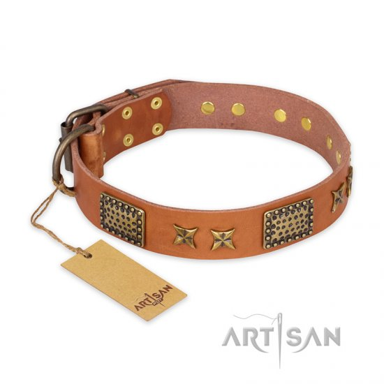 """Cosmic Traveller"" FDT Artisan Adorned Leather American Bulldog Collar with Old Bronze-Plated Stars and Plates"
