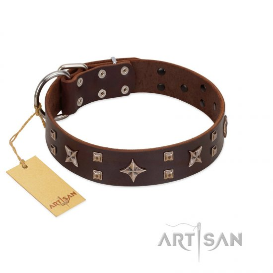 """Stars in Sands"" Modern FDT Artisan Brown Leather American Bulldog Collar with Studs and Stars"