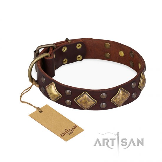 """Golden Square"" FDT Artisan Brown Leather American Bulldog Collar with Large Squares"