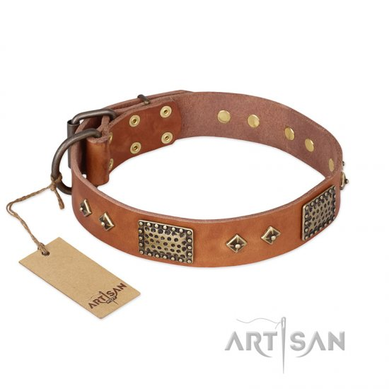 """Catchy Look"" FDT Artisan Decorated Tan Leather American Bulldog Collar"