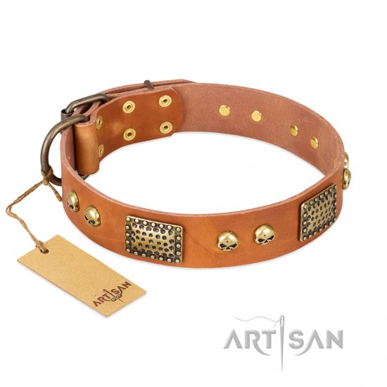 """Saucy Nature"" FDT Artisan Tan Leather American Bulldog Collar with Old Bronze Look Plates and Skulls"