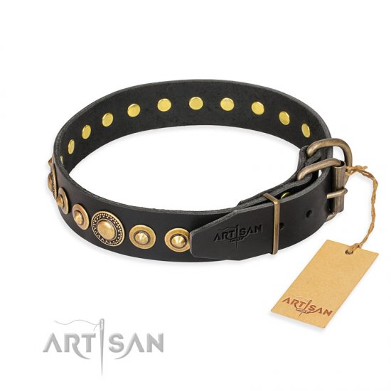 """Gold Mine"" FDT Artisan Black Leather American Bulldog Collar with Amazing Bronze-Plated Round Studs"