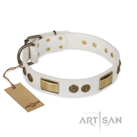"""Golden Avalanche"" FDT Artisan White Leather American Bulldog Collar with Old Bronze Look Plates and Circles"
