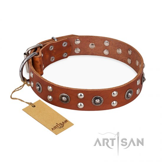 """Silver Elegance"" FDT Artisan Decorated Leather American Bulldog Collar with Old Silver-Like Plated Studs and Cones"