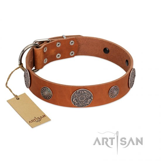 """Foxy Nature"" FDT Artisan Tan Leather American Bulldog Collar with Chrome Plated Brooches"