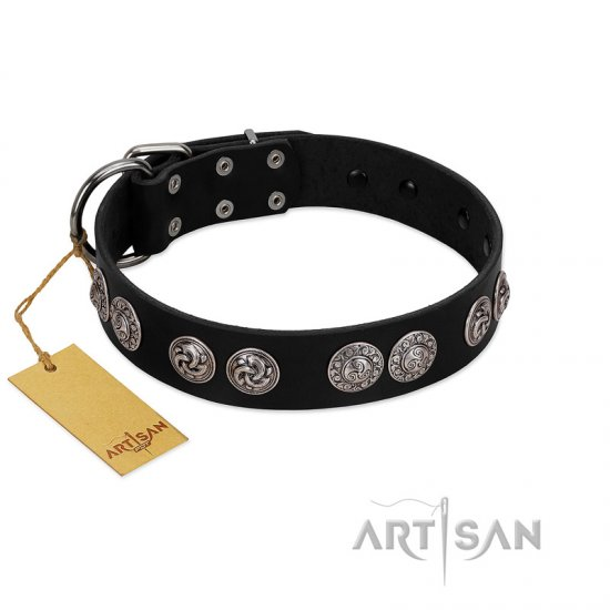 """Magic Amulete"" Handcrafted FDT Artisan Black Leather American Bulldog Collar with Chrome-Plated Shields"