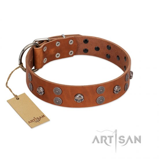 """Road Rider"" FDT Artisan Tan Leather American Bulldog Collar with Old Silver-like Skulls and Medallions"