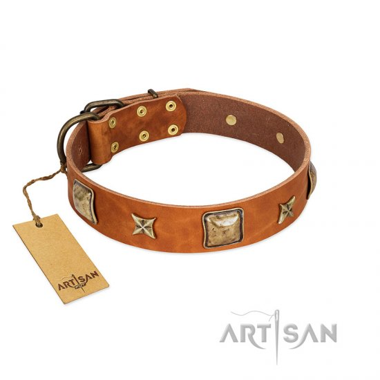 """Celtic Tunes"" FDT Artisan Tan Leather American Bulldog Collar Adorned with Stars and Squares"