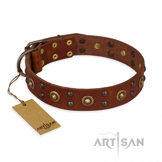 """Unfailing Charm"" FDT Artisan Studded Tan Leather American Bulldog Collar"