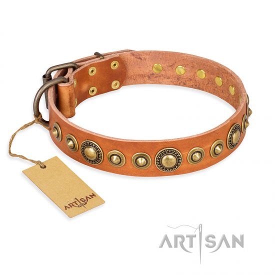 """Feast of Luxury"" FDT Artisan Tan Leather American Bulldog Collar with Old Bronze Look Circles"