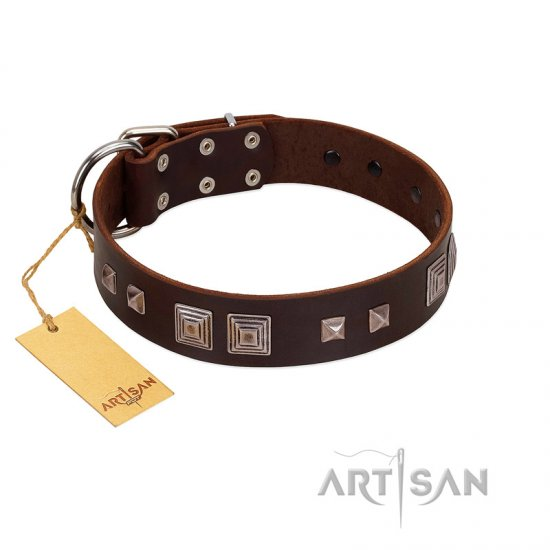 """Object of Virtu"" FDT Artisan Brown Leather American Bulldog Collar with Old Silver-like Square Studs and Pyramids"