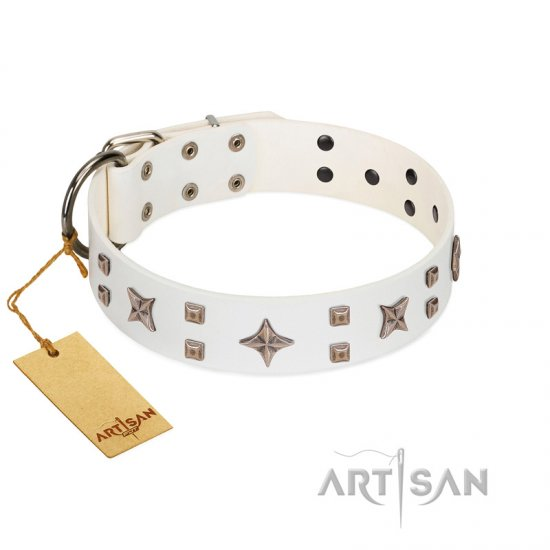 """Starry Heaven"" Designer Handcrafted FDT Artisan White Leather American Bulldog Collar with Stars and Studs"