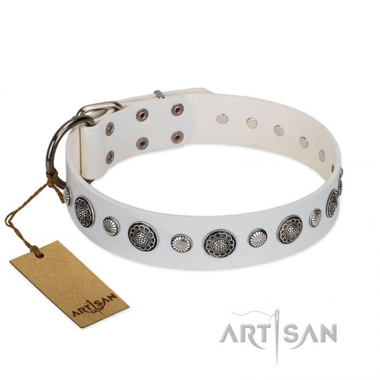 """Fluff-Stuff Beauty"" FDT Artisan White Leather American Bulldog Collar with Silver-like Studs and Conchos"