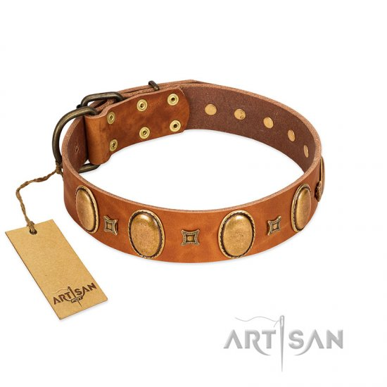 """Glossy Autumn"" Designer Handmade FDT Artisan Tan Leather American Bulldog Collar with Ovals and Studs"