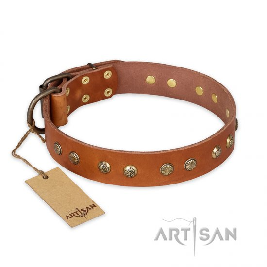 """Spring Flavor"" FDT Artisan Adorned Leather American Bulldog Collar with Old Bronze-Plated Engraved Studs"