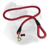 Round Nylon Dog Leash With Brass Snap Hook for American Bulldog