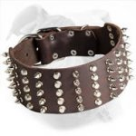 Spiked and Studded Leather Dog Collar for American Bulldog