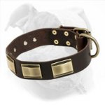 Decorated Leather Dog Collar for American Bulldog