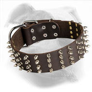 Spiked Leather Dog Collar for American Bulldog