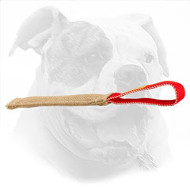 Pocket Size Bite Tug for American Bulldog Puppy