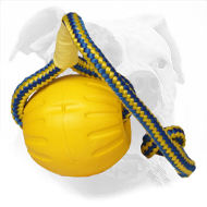 3 Inch American Bulldog Foam Ball on Nylon Rope