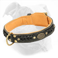 Adjustable American Bulldog Collar Made of Leather