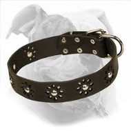 """Elegant Flower"" Leather Dog Collar for American Bulldog"