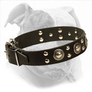 """Silver Knights"" Leather Dog Collar for American Bulldog"