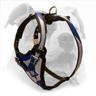 """Holy Land"" Design Leather Dog Harness for American Bulldog"