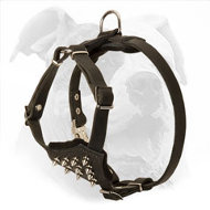 Spiked Leather Dog Harness for American Bulldog Puppy