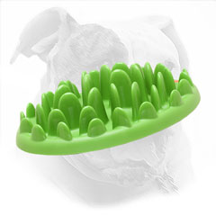 Plastic Feeder for Eating with Fun