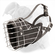 Wire Basket Muzzle Leather Padded for American Bulldogs