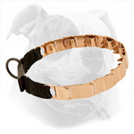 19 Inch American Bulldog Pinch Collar Made of Curogan