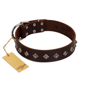 """Boundless Energy"" Premium Quality FDT Artisan Brown Designer Leather American Bulldog Collar with Small Pyramids"