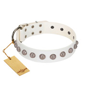 """Grandeur Dog"" FDT Artisan White Leather American Bulldog Collar with Engraved Studs"