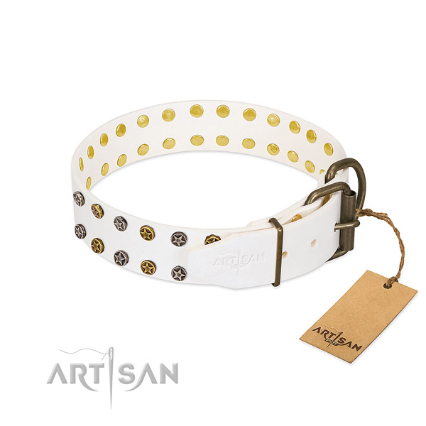 Stylish design full grain leather dog collar with corrosion proof decorations